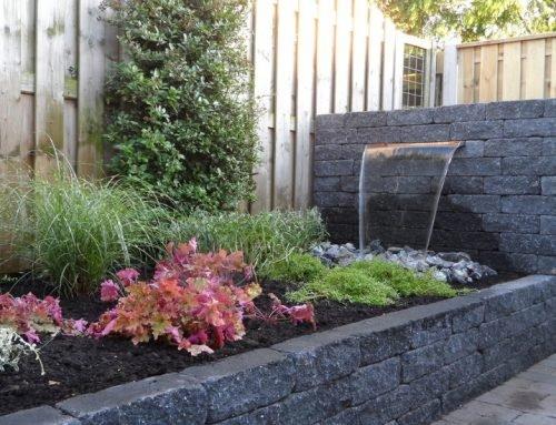 Tips bij het inrichten van je tuin